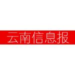 云南信息报logo