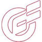 泛华金融服务集团logo