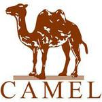 广东骆驼服饰有限公司logo