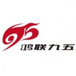 广东鸿联九五信息产业有限公司logo