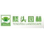 浙江滕头园林股份有限公司logo