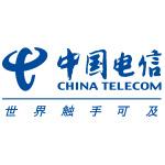 中国电信系统集成