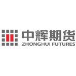 中辉期货经纪有限公司logo