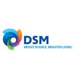 帝斯曼中国(DSM)logo