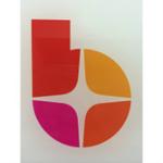 天津百耀信息技术有限公司logo