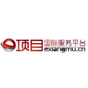 e项目国际服务平台logo
