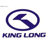 金龙集团logo