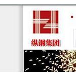 纵横钢铁集团logo