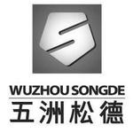 五洲松德会计师事务所logo