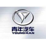 浙江金华青年汽车logo