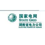 湖南省电力公司logo