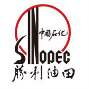 山东东营胜利油田河口采油厂logo