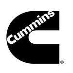康明斯燃油系统(武汉)有限公司logo
