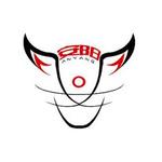 沭阳安阳工艺品有限公司logo