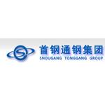 通化钢铁集团公司logo