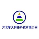 河北擎天网络科技有限公司logo