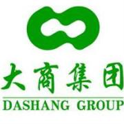 大商集团logo