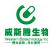 重庆威斯腾生物技术服务logo