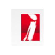 普华基础软件股份有限公司logo