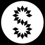 塞宾科技logo