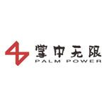 江西掌中无限网络科技有限公司logo