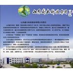 山东盛大科技集团logo