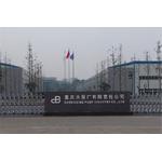 重庆水泵厂有限责任公司logo
