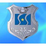 盛仕达钢铁集团logo