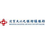 北京大兴九银村镇银行logo