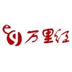 北京万里红科技股份有限公司logo