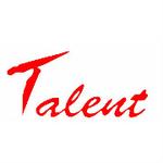 大连泰伦管理咨询有限公司logo