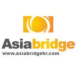 Asia Bridgelogo