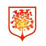 贵州盛华职业学院logo