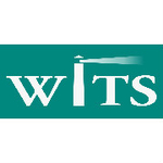 WITS Consultinglogo