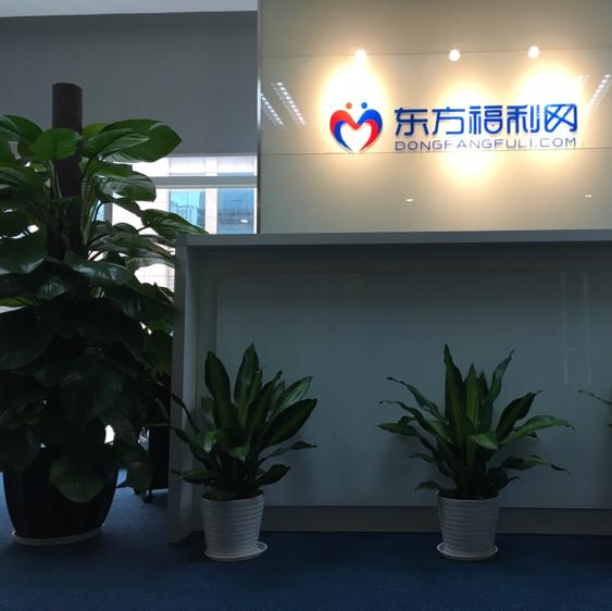 上海东福网络科技有限公司深圳分公司