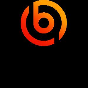 宝唛金服logo