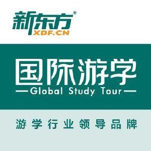 新东方沃凯德国际教育旅行公司logo