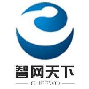 智网天下logo