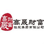 高晟财富控股集团有限公司logo