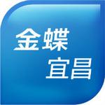 宜昌市金蝶软件有限公司logo