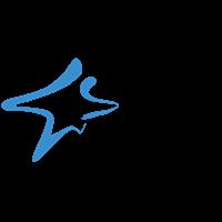 沈阳东方启明星体育咨询有限公司logo