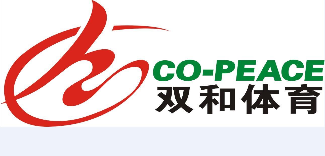 湖南双和建设有限公司logo