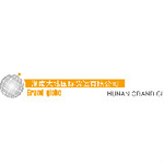 湖南大地国际货运有限公司logo