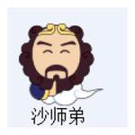 沙师弟(重庆)网络科技有限公司logo
