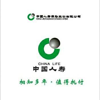 中国人寿保险公司logo
