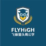 飞藤教育logo