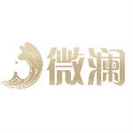 微澜(广州)科技有限公司logo