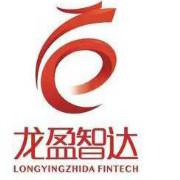 龙盈智达logo