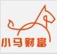 小马青青财富管理logo