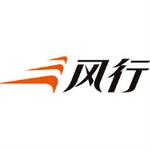 北京风行在线技术有限公司logo